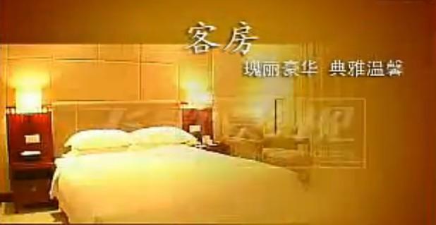 酒店专题片配音:会展国际酒店宣传片